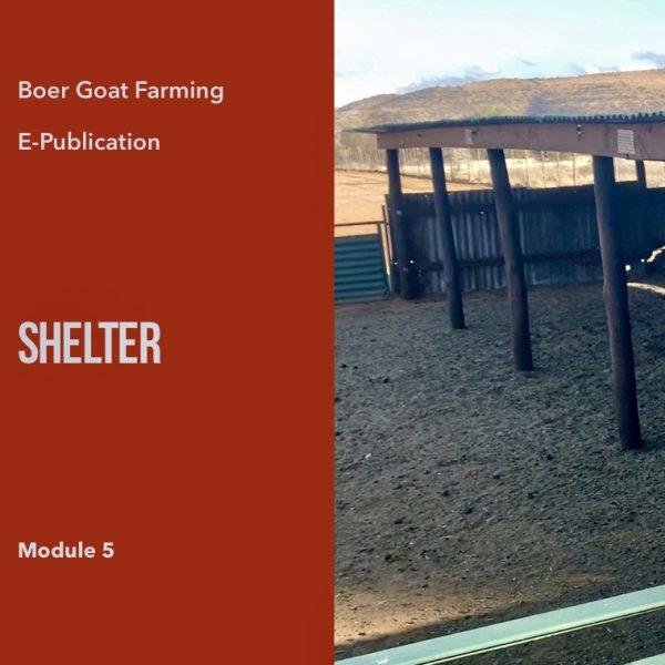 E-pub Module 5: Shelter