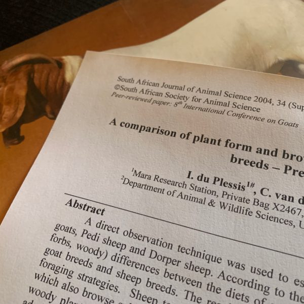 Boer Goat related research documents